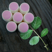 Sweet Summer Strawberry Lip Lotion